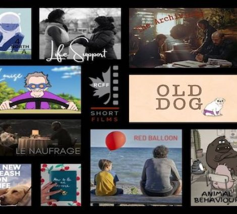 10 Short Films about kindness, compassion, and dogs.